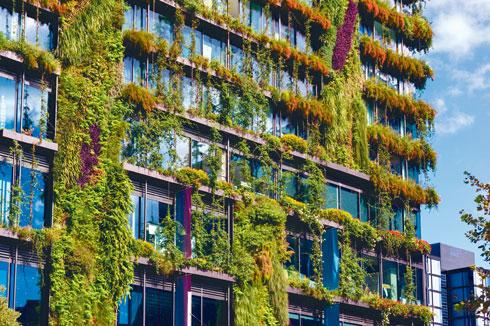 אם אתם אוהבים טבע, זו בדיוק הסיבה לחיות בעיר (צילום: shutterstock)
