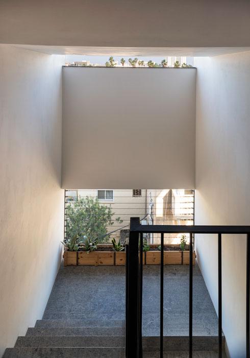 בקירות הוטמנה מערכת השקיה משותפת הן למרפסות הפרטיות והן לחדר המדרגות, מתוך תפישה שהחזית הירוקה היא נכס משותף (צילום: ליאור גרונדמן)