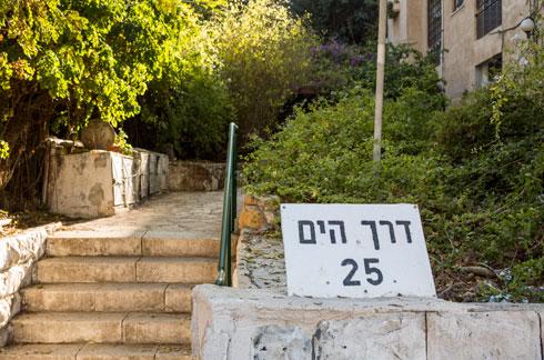 אחד הרחובות היפים ביותר בחיפה (צילום: אביתר הרשטיק)