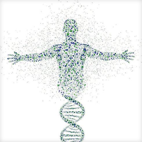 הבינה המלאכותית היא זו שיכולה להחזיר לרפואה את היחסים האנושיים שנשחקו בין הרופא למטופל (צילום: Shutterstock)