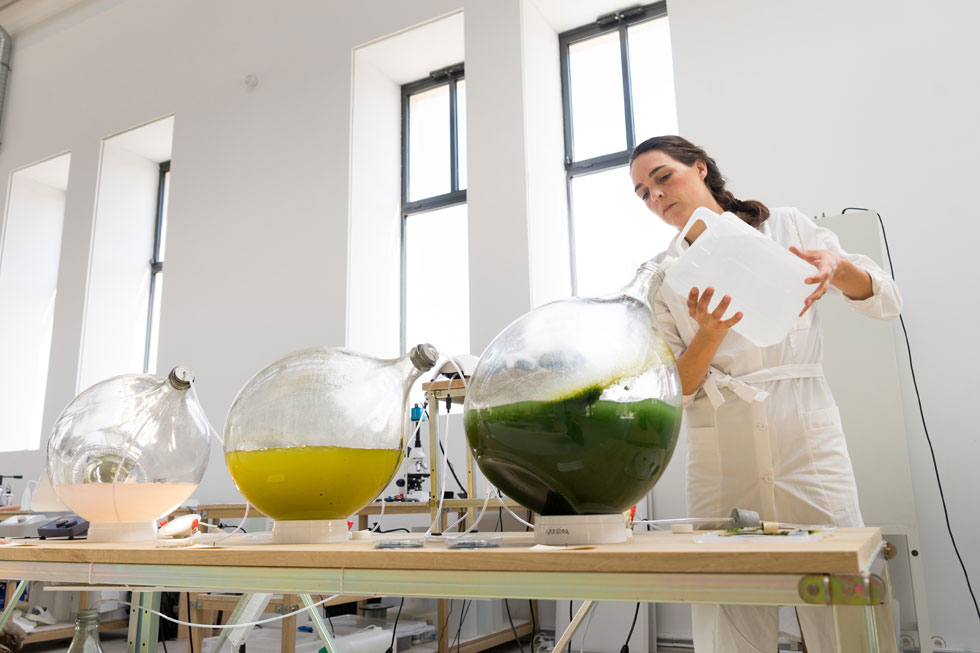אריק קלרנביק ומרטה דרוס, שני מעצבים הולנדיים צעירים, הצליחו לגדל, לייבש ולעבד אצות לביופולימר, שממנו הדפיסו בתלת ממד כלים דקורטיביים. תמונתם בהמשך הכתבה (צילום: Studio Klarenbeek & Dros with Atelier Luma, Algae Lab, Mod, 2018 photo Antoine Raab)