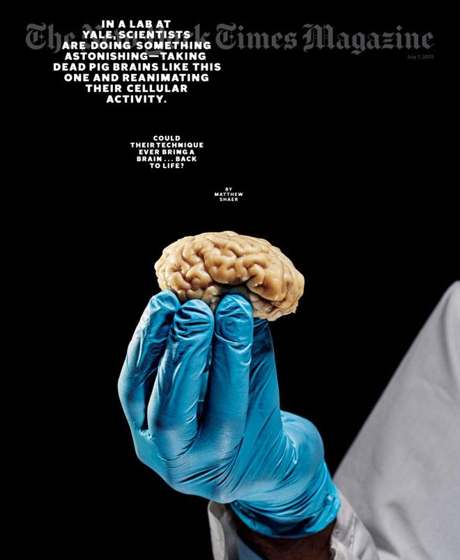 שער עם מוח וכוח