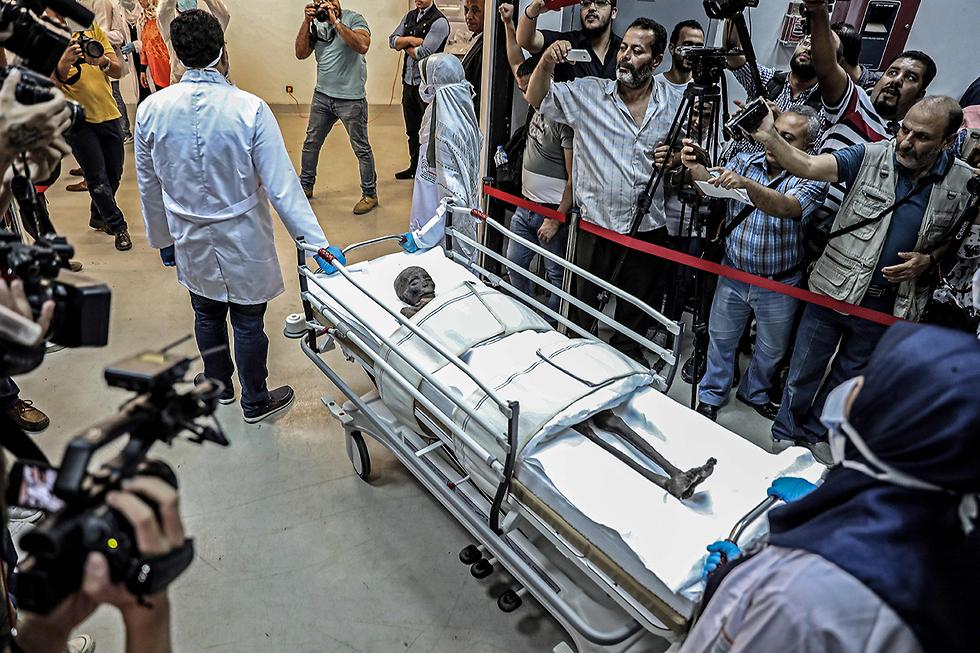 תמונות השנה AFP מומיה מוצאת מ המוזיאון הלאומי לתרבות מצרים  (צילום: AFP)