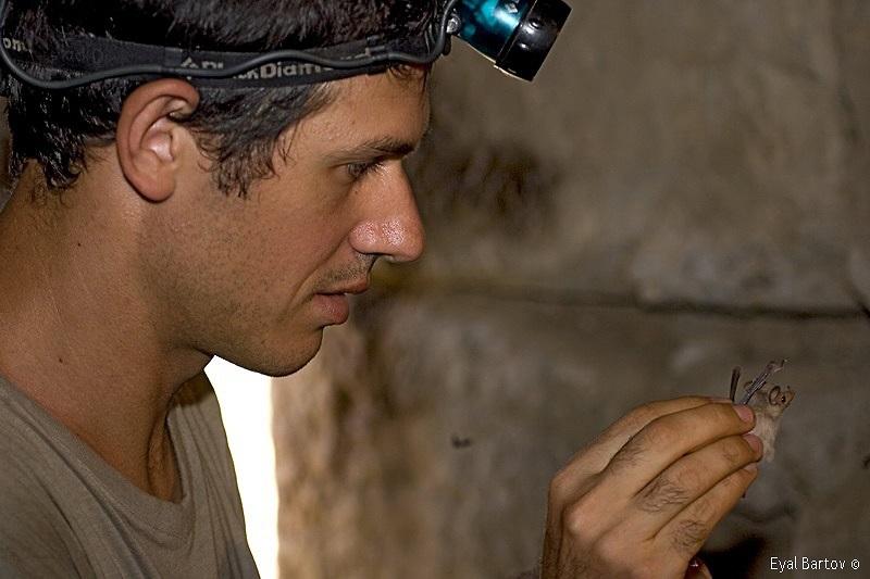 """ד""""ר ערן לוין בפעולה (צילום: אייל ברטוב)"""