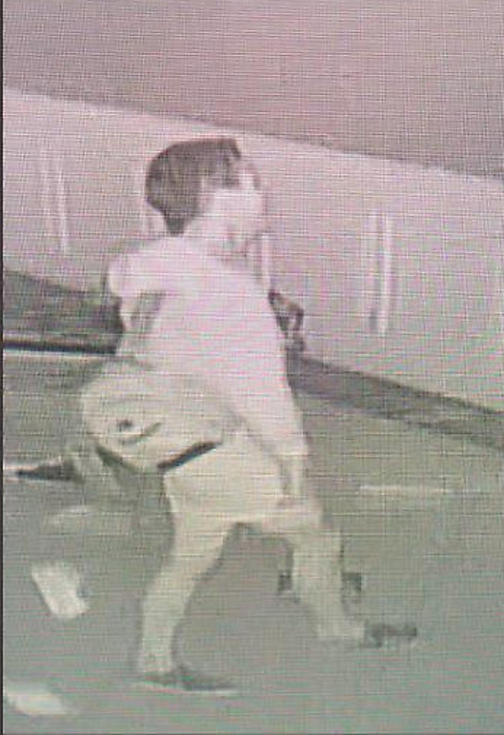 משטרת לוס-אנג'לס פרסמה את תמונת החשוד בוונדליזם, כפי שנתפס במצלמות האבטחה ()
