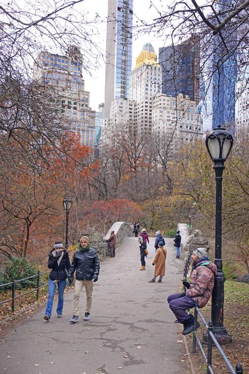 הכי ניו-יורק שיש. סנטרל פארק  (צילום: צביקה בורג)