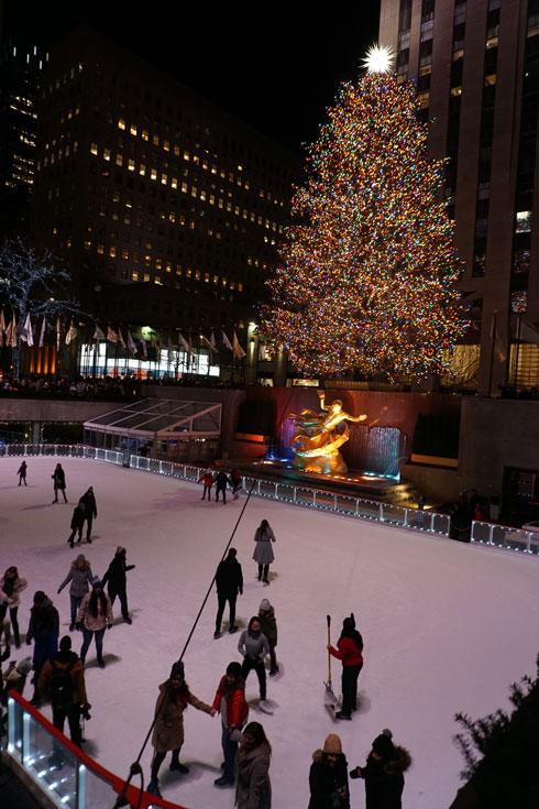עץ חג המולד המפורסם ומשטח ההחלקה. מרכז רוקפלר  (צילום: צביקה בורג)