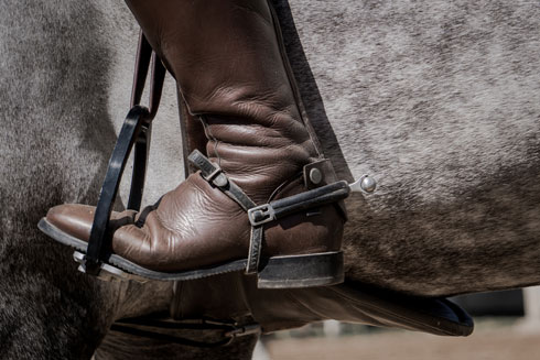 אפשר לרוכבים להישאר על גב הסוס, ויצר אליטה חדשה, של פרשים (צילום: Shutterstock)