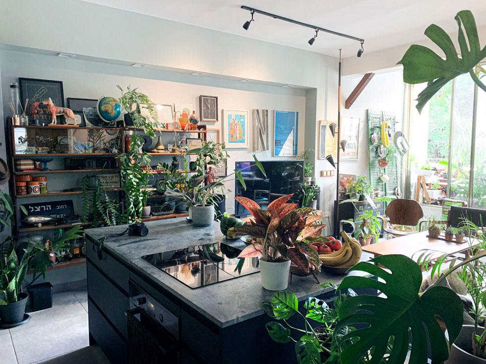 אצל אורן פייט. ''בבית הקודם שלנו הצמחים היו כחומר מילוי בין חפצים ורהיטים. בבית החדש הם שותפים, עוד משלב התוכניות'' (צילום: אורן פייט וגל ממליה)