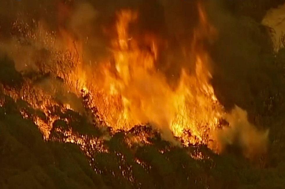 אוסטרליה שריפות מדינת ויקטוריה (צילום: AP)