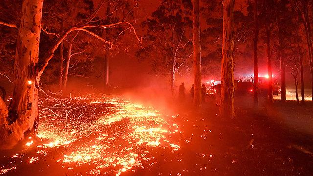 אוסטרליה נוורה שריפות שריפה ניו סאות' וויילס (צילום: AFP)