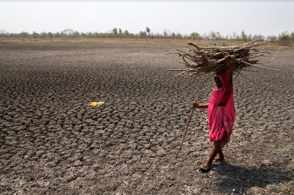 (צילום: Victor Subrata Biswas / Greenpeace)