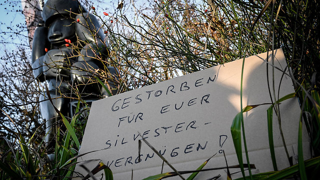 גרמניה שריפה קרפלד גן חיות בגלל כדורים פורחים עם אש בחגיגות השנה החדשה (צילום: EPA)