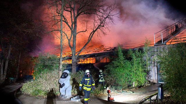 גרמניה שריפה קרפלד גן חיות בגלל כדורים פורחים עם אש בחגיגות השנה החדשה (צילום:  AP)
