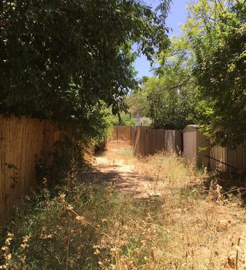 מראה הגינה לפני השיפוץ (צילום: באדיבות האדר' נטלי טל)