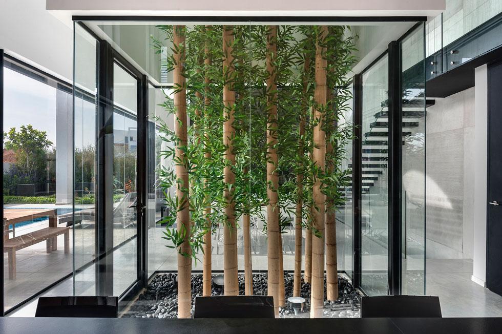 חצר פנימית ירוקה במרכז בית שתכנן משרד ישראלביץ אדריכלים (צילום: עודד סמדר)