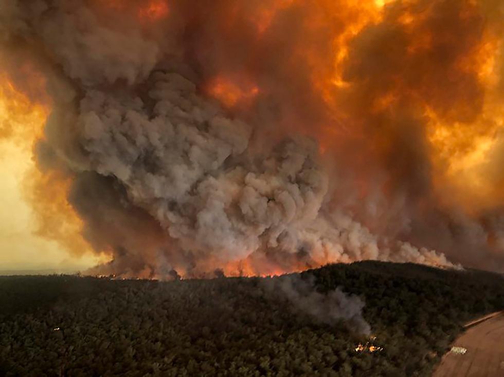 שריפות באוסטרליה (צילום: AP)