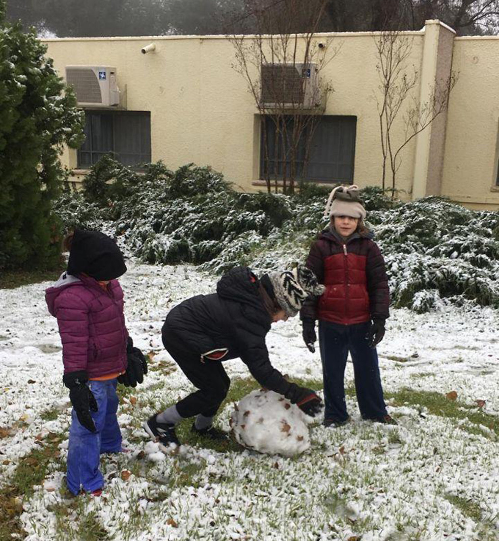 שלג בקיבוץ אורטל (צילום: תיירות אורטל)