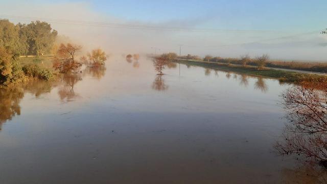 תעלת הירדן המזרחית (צילום: עינת זיסוביץ)