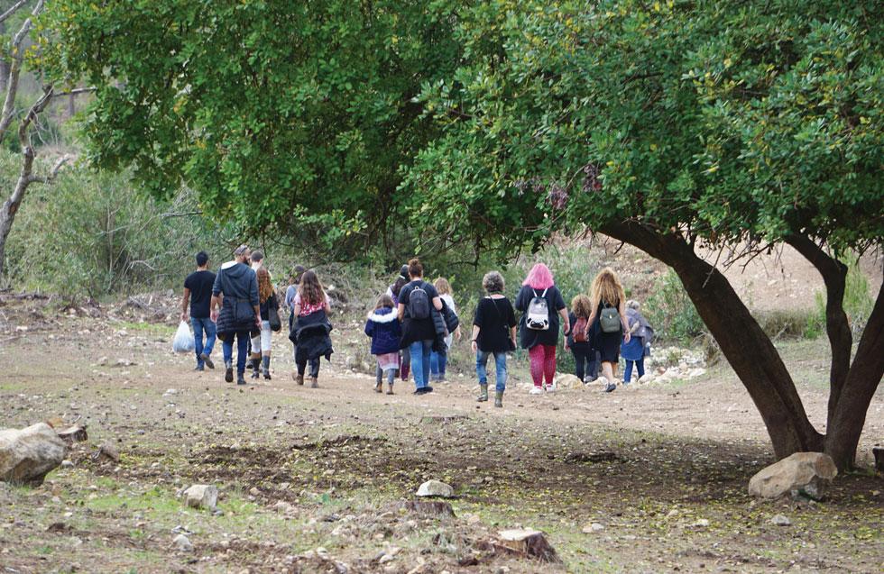 טיול חורפי בישראל לא חייב להיות לחרמון. נחל אורן  (צילום: צביקה בורג)