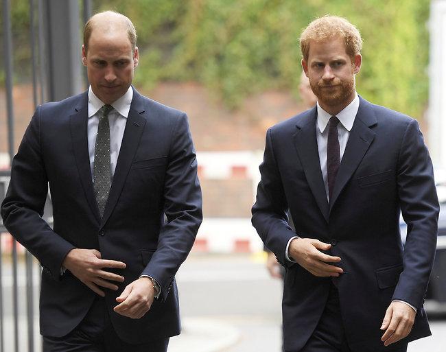 מסוכסכים. הנסיכים וויליאם והארי (צילום: Ap)