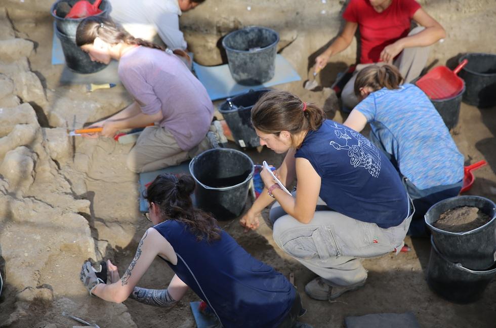 בודקים את הקיר (צילום: אוניברסיטת חיפה)