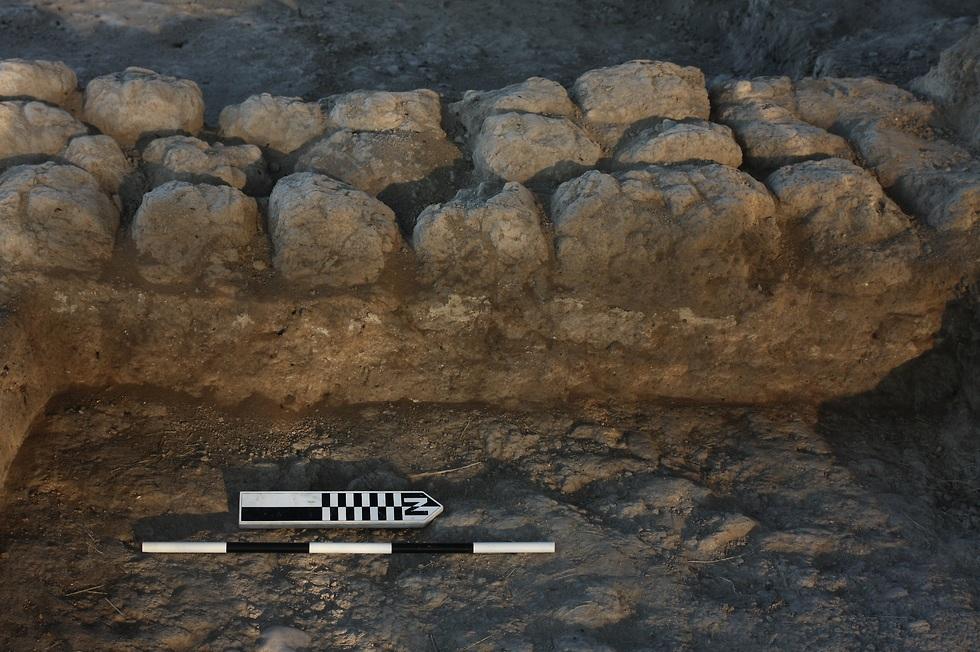 קיר לבנים ועליו טייח מלפני 7,200 שנה (צילום: אוניברסיטת חיפה)