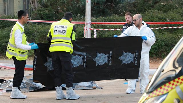 חשד לרצח בתל אביב: בן 40 נמצא ירוי בפארק וולפסון (צילום: דנה קופל)