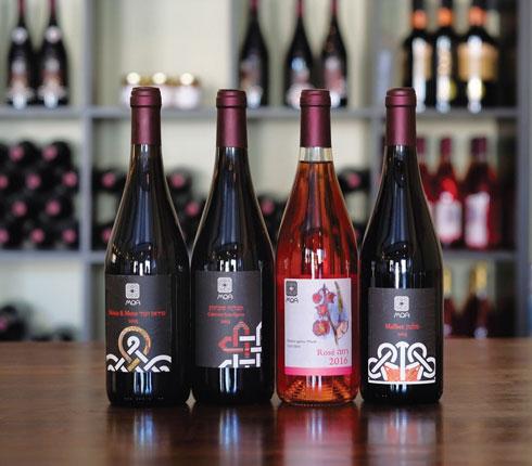 יין מדברי. יקב מואה  (צילום: אלכס ליבק)