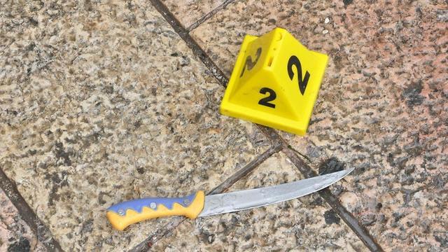 סכין  (צילום: דוברות המשטרה)