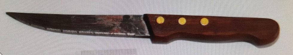 הסכין איתה דקרה דינה זלוטניק את שושנה מנשירוב ()