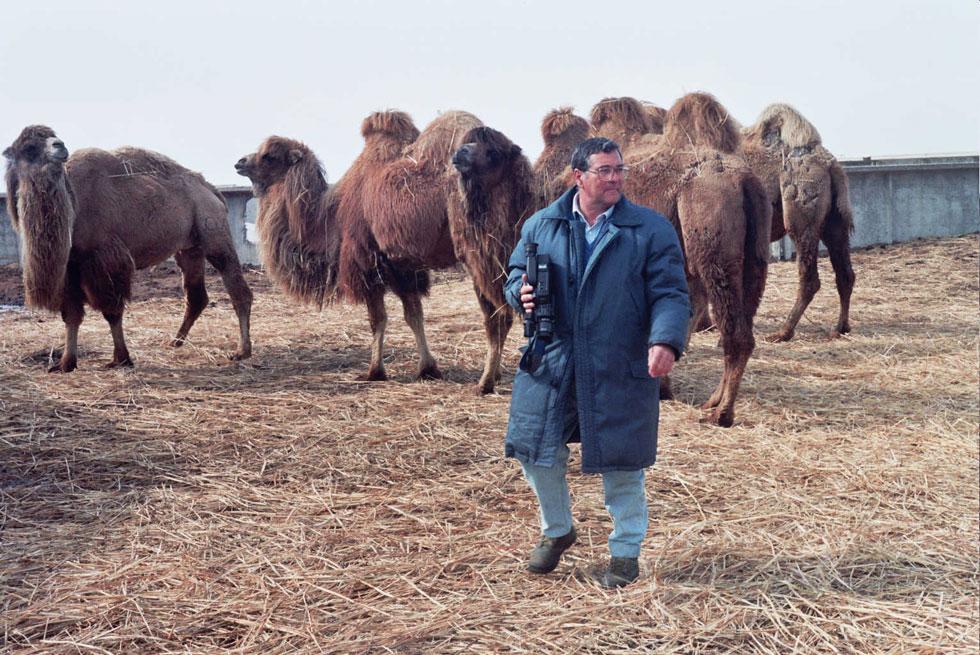 """פרופ' ראובן יגיל ז""""ל עם גמלים דו-דבשתיים שחקר. """"חצה גבולות פיזיים ומנטליים כדי לעזור לאנשים"""" (צילום וארכיון: גואל דרורי)"""