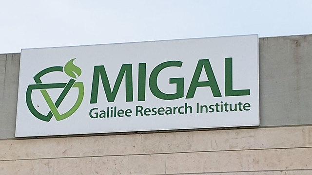 לוגו מכון מיגל ()