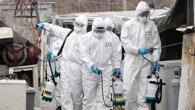 דרום קוריאה נגיף קורונה סיאול (צילום: AFP)