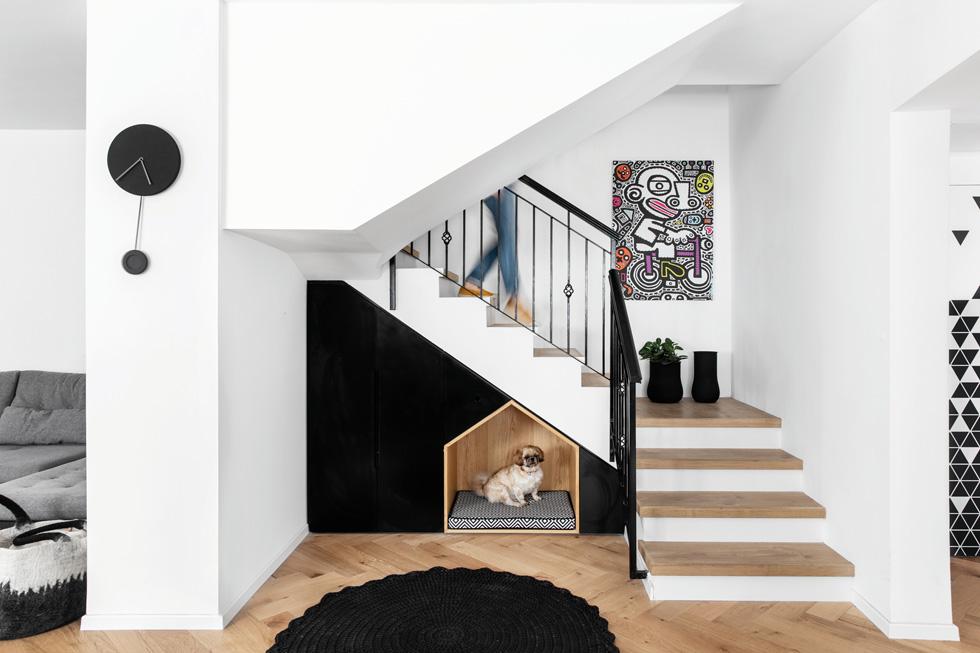 מתחת למדרגות נבנתה לזוג הכלבים של המשפחה מלונה יוצאת דופן  (צילום: איתי בנית)