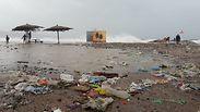 צילום: החברה להגנת הטבע