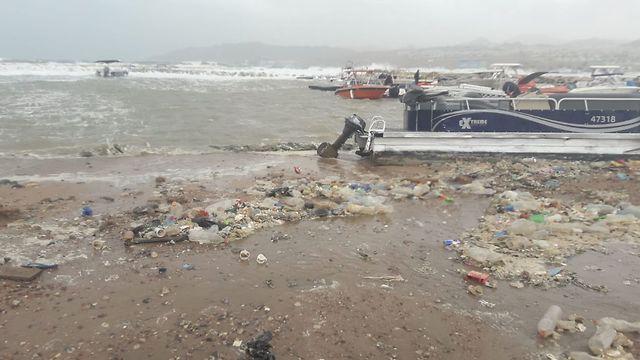 אשפה שנפלטה מהים במפרץ אילת (צילום: החברה להגנת הטבע)