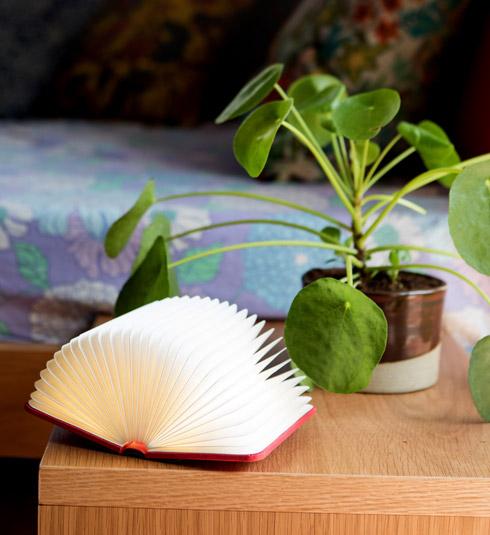מנורה בצורת ספר קריאה, שקנתה בניו יורק (צילום: שירן כרמל)