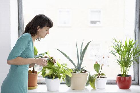 הגינון מלמד מחויבות והשקעה (צילום: Shutterstock)