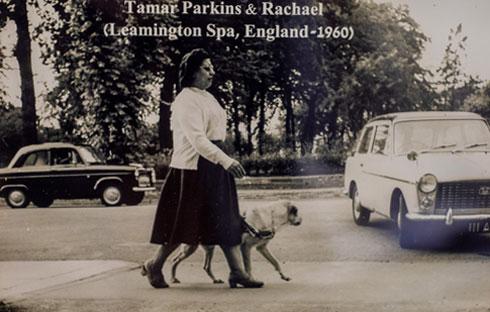 תמר פרקינס, מייסדת אגודת העיוורים הישראלית הנעזרים בכלבי נחייה, בביקור באנגליה ב-1960 (צילום רפרודוקציה: טל שחר)