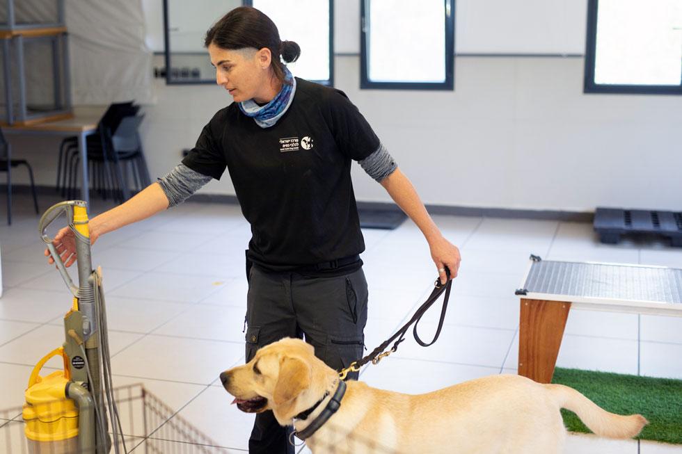 """אימון במרכז לכלבי נחייה בבית עובד. """"השירות הוא חינמי עבור כל אדם עם עיוורון"""" (צילום: טל שחר)"""