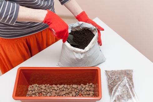 מכינים את האדנית לשתילה (צילום: Shutterstock)