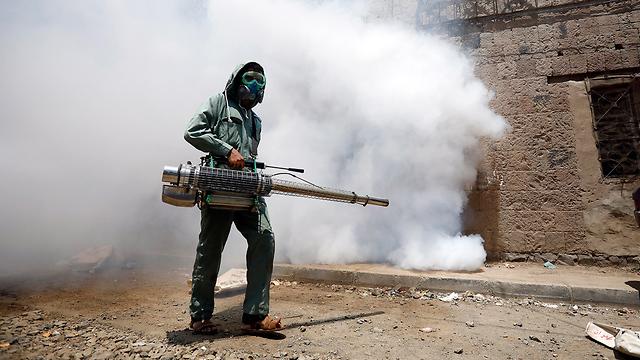 תימן חיטוי נגיף הקורונה מדינות בלי קורונה  (צילום: EPA)