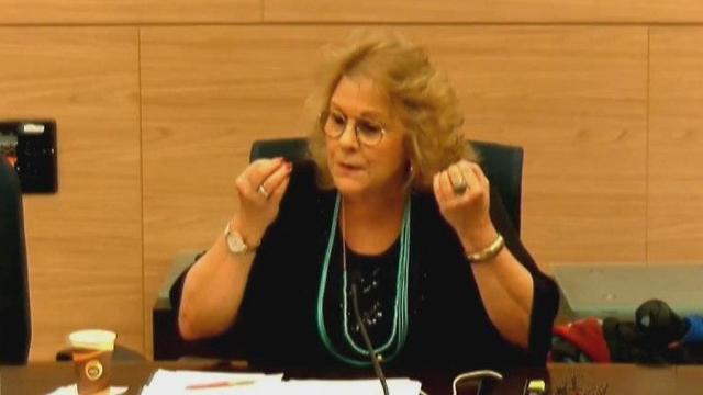 אורלי פרומן צועקת שם על האוצר שמוציאים להורים את המיץ (צילום: ערוץ כנסת)