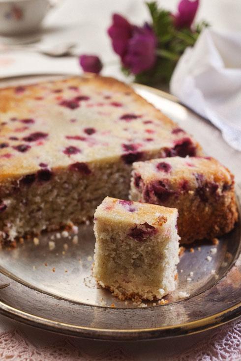 עוגת קוקוס ופירות יער   (צילום: רן גולני, סגנון: נעמה רן)