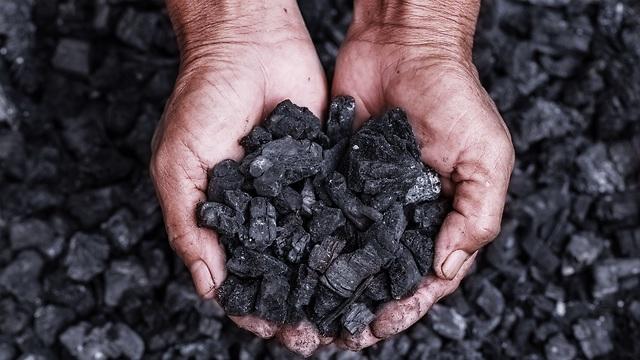 פחם (צילום: shutterstock)