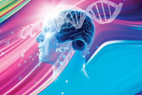 המוח, שמושפע מהתפיסות שלנו את עצמנו ומשפיע על האופן שבו הגוף כולו מתוזמר עד לרמת ההורמונים והכימיה בדם, הוא שאחראי לכך שבמקרים מסוימים אבחון גנטי מחולל מציאות יותר משהוא חושף אותה (צילום: Shutterstock)