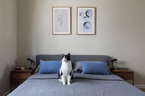 חדר השינה (צילום: שירן כרמל)
