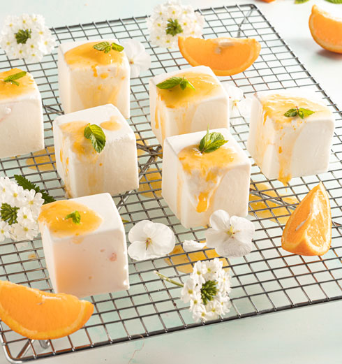 מקפא גבינה ברוטב תפוזים  (צילום: שרית גופן, סגנון: עמית דונסקוי)