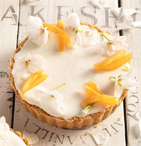 טארט גבינה, יוגורט ושסק  (צילום: שרית גופן, סגנון: עמית דונסקוי)